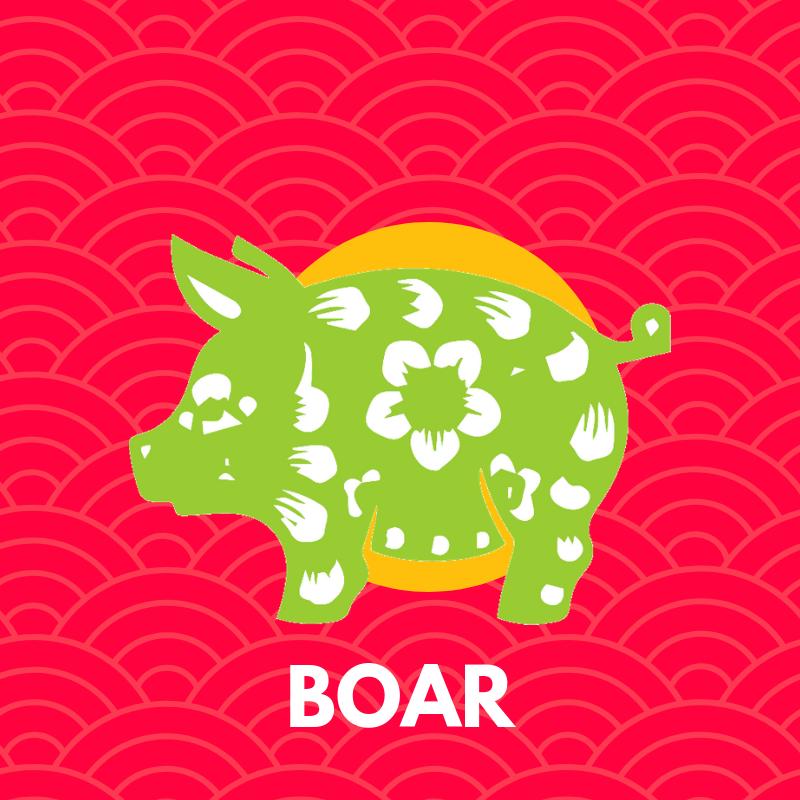 2019-boar-forecast.png