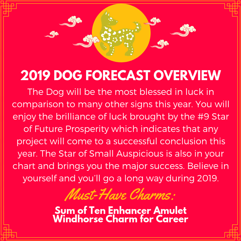 2019-feng-shui-lucky-charms-for-dog.png