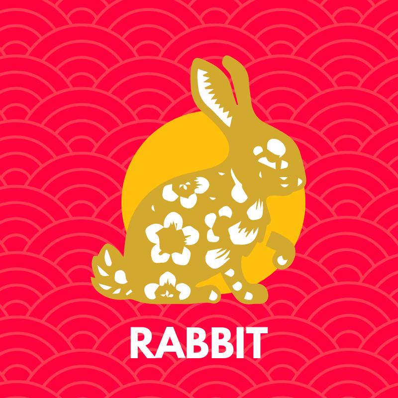 2019-rabbit-forecast.png