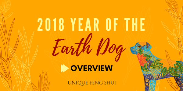 earth-dog-overview.png