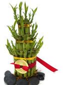 Lucky Bamboo 5 Tier