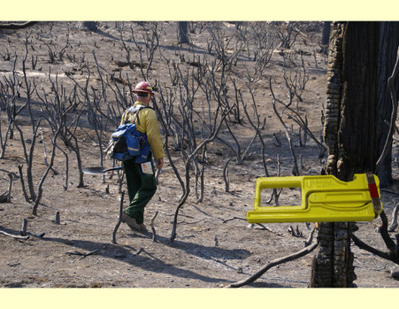 Where did I leave that hose clamp? Photo courtesy of the USFS