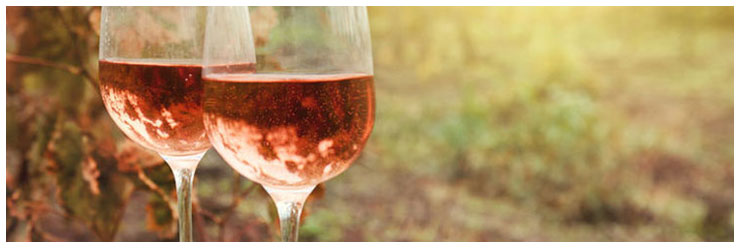 Two glasses of the rosé wine in autumn vineyard. Harvest time.