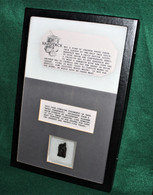 Piece of original Civil War Hardtack from firepit