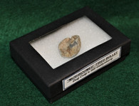 Original Civil War fired bullet recovered at Culp's Hill, Gettysburg