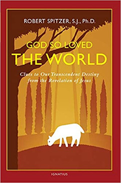 God So Loved The World- Clues to Our Transcendent Destiny from the Revelation of Jesus