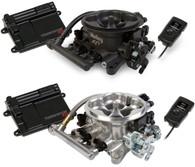 HOLLEY Terminator EFI Engine Management System