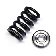 BRIAN CROWER Valve Springs & Ti-Retainers suit Nissan RB26DETT