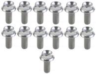 TLG Titanium Sump fastener kit suit ALL GM LS Engines