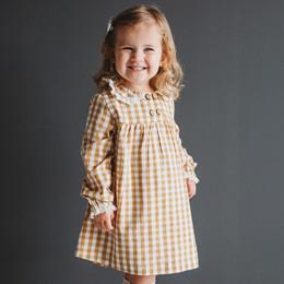 Ren & Rouge Apple Button Gingham Dress
