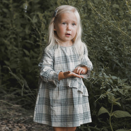 Rylee & Cru   Enchanted Forest Hazel Dress - Forest Flannel (Drop 1)