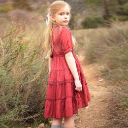 Blu Pony Vintage Rosalynn Dress - Currant