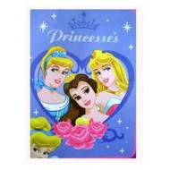 Large Disney Princess Royal Plush Throw Blanket : Love