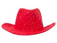 Glitter Sequin Trim Cowboy Hat