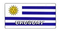 National Plastic License Plate Cover Holder, Uruguay