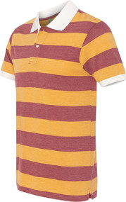 Alternative - Eco Jersey Ugly Stripe Short Sleeve Polo
