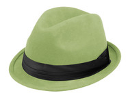 Ladies Wool Felt Fedora Hat - Cactus