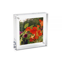 Dumas - Magnetic 4x4 Square Picture Frame