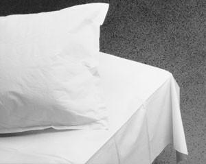 "Graham Medical Bed Sheet 2-Ply Tissue 40"" x 72"""