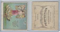 T97 Perfection, Riddle Series, 1910, What Fish Is Most Valued