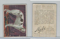 T96 American Tobacco, Prize Dogs, 1910, Russian Wolfhound