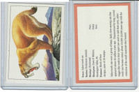 1994 US Postal Service, Stamp Cards,  Saber Tooth Cat