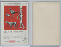 F213-3 Coca Cola, Nature Study, Mans Friends, 1920's, #1 Vertebrate