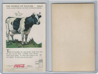 F213-3 Coca Cola, Nature Study, Mans Friends, 1920's, #4 Cow