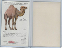 F213-3 Coca Cola, Nature Study, Mans Friends, 1920's, #6 Camel