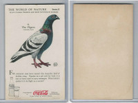 F213-3 Coca Cola, Nature Study, Mans Friends, 1920's, #9 Pigeon