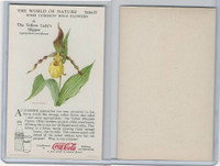 F213-3 Coca Cola, Nature Study, Wild Flowers, 1920's,  #6 Lady's Slipper