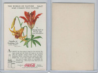 F213-3 Coca Cola, Nature Study, Wild Flowers, 1920's,  #8 Wood Lilly