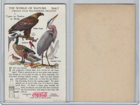 F213-3 Coca Cola, Nature Study, Birds, 1920's, #1 Eagle