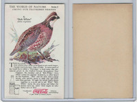F213-3 Coca Cola, Nature Study, Birds, 1920's, #6 Bob-White