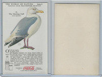 F213-3 Coca Cola, Nature Study, Birds, 1920's, #11 Herring Gull