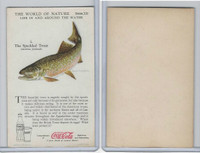 F213-3 Coca Cola, Nature Study, Water Life, 1920's, #1 Speckled Trout