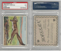 T29 Hassan Cigarettes, Animals, 1911, African Jumping Hare, PSA 3 VG