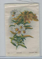 SC7 Imperial Tobacco, Garden Flowers, 1910, #24 Daisies