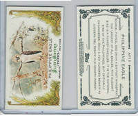 2011 Topps, Allen & Ginter Animals in Peril, #AP15 Philippine Eagle