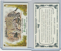 2011 Topps, Allen & Ginter Animals in Peril, #AP26 Amur Leopard