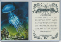 2011 Topps, Allen & Ginter Ascent of Man, #AOM5 Cnidarians