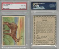 T29 Hassan Cigarettes, Animals, 1911, Lechwe, PSA 4 VGEX