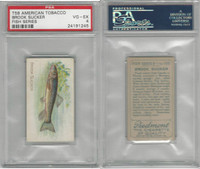 T58 American Tobacco, Fish, 1910, Brook Sucker, PSA 4 VGEX