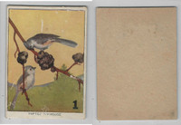 1940's Bird Lotto Game Cards, #1 Tufted Titmouse