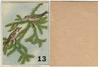 1940's Bird Lotto Game Cards, #13 Golden Crowned Kinglet