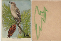 1940's Bird Lotto Game Cards, #14 Mockingbird