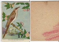 1940's Bird Lotto Game Cards, #17 Yellow Billed Cuckoo