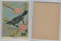 1940's Bird Lotto Game Cards, #20 Catbird
