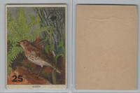 1940's Bird Lotto Game Cards, #25 Veery
