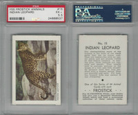 F55 Frostick, Animal Cards, 1933, #15 Indian Leopard, PSA 5.5 EX+